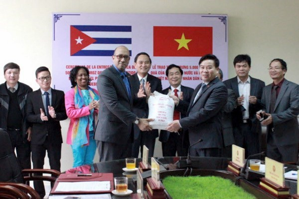 Vietnam gifts Cuba 5,000 tonnes of rice hinh anh 1