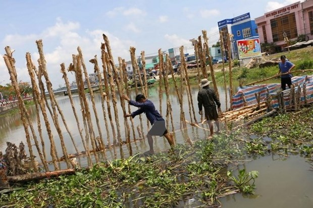 Conference seeks safe water supply for Mekong Delta hinh anh 1