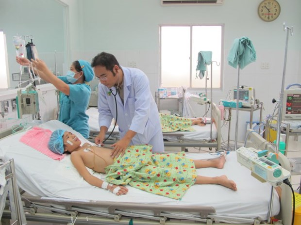 Ben Tre: 872 cases of dengue fever recorded in six months hinh anh 1