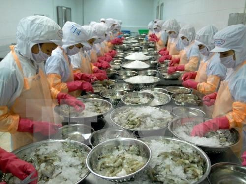 Vietnamese exporters learn about trade safeguards hinh anh 1