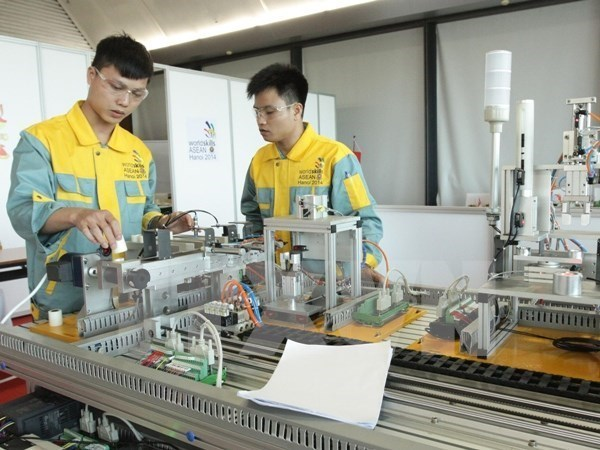 Profession-oriented higher education project under review hinh anh 1