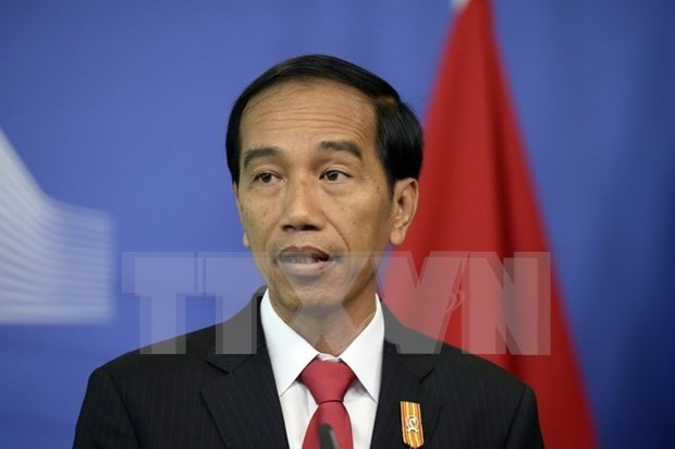 Indonesia warns foreign illegal fishing vessels hinh anh 1