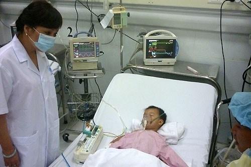 Japanese encephalitis returns to Hanoi hinh anh 1