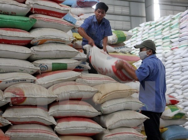 Laos to build more rice warehouses hinh anh 1