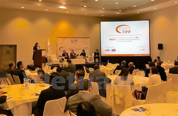 Vietnam attends TPP forum in Mexico hinh anh 1