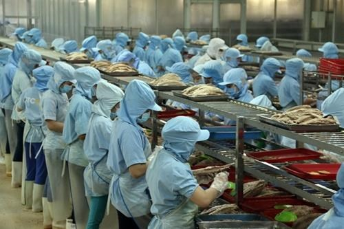 HCM City targets 500,000 firms in 2020 hinh anh 1