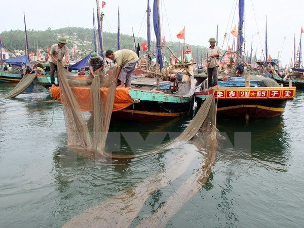 Initiatives supporting labourers affected by mass fish deaths hinh anh 1