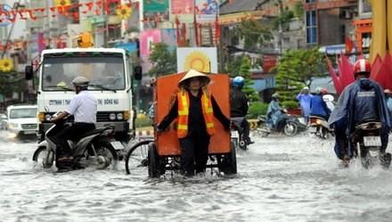 New Dong Nai flood project hinh anh 1