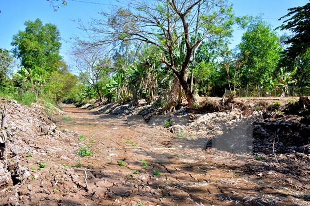 Ca Mau's climate change response supported hinh anh 1