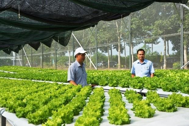 Binh Phuoc high-tech farming centre opens hinh anh 1