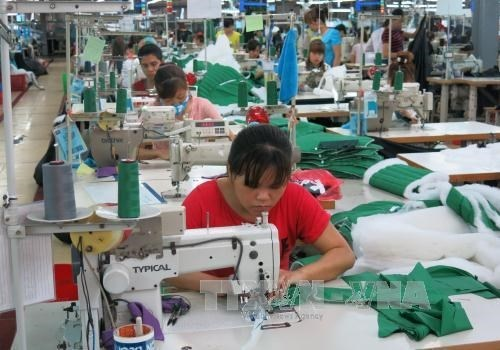 Firms optimistic about H2 results hinh anh 1
