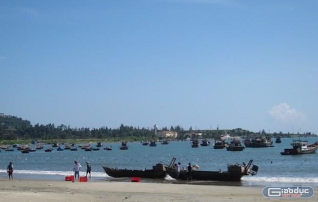 Da Nang keen to become major fishing centre hinh anh 1