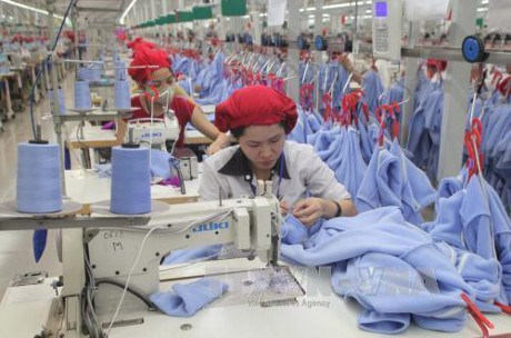 Apparel exports reach 12.6 bln USD in 6 months hinh anh 1