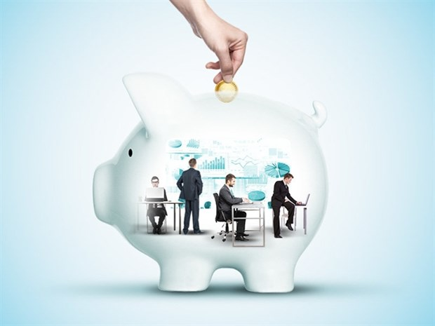Mutual funds put up good show in first half hinh anh 1