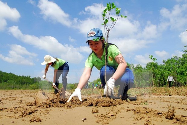 Binh Thuan launches REDD+ action plan hinh anh 1