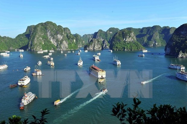 Ha Long Bay ranks 3rd in Southeast Asia's most ideal destinations hinh anh 1