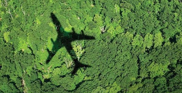 Jetstar starts initiative to offset flight emissions hinh anh 1