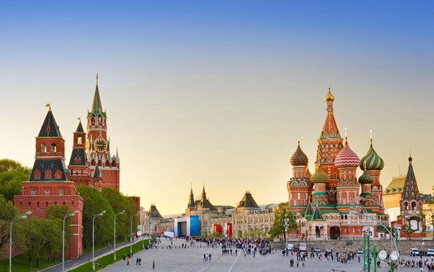 Travel agents urged to enhance management of tours to Russia hinh anh 1