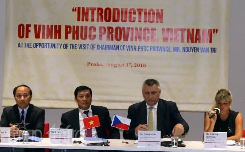 Vinh Phuc seeks partnerships with Czech Republic hinh anh 1