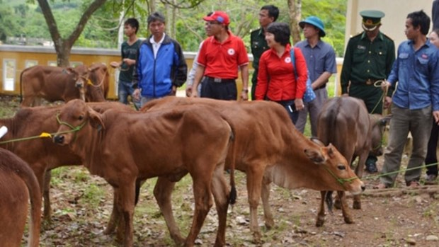 US company helps Thanh Hoa locals improve livelihoods hinh anh 1
