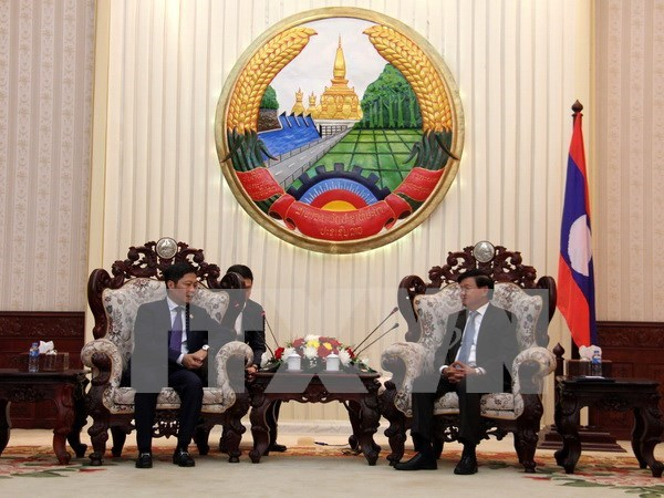 Laos welcomes Vietnam's projects on goods production, wood processing hinh anh 1
