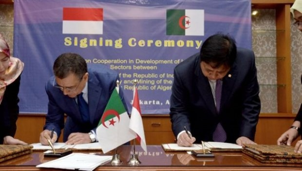 Algeria, Indonesia intensify cooperation in industry hinh anh 1