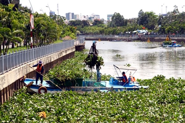 HCM City cracks down on pollution hinh anh 1