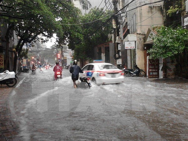 Storm Dianmu causes losses to northern mainland hinh anh 1