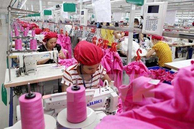 Mexico studies Vietnam's garment-textiles hinh anh 1