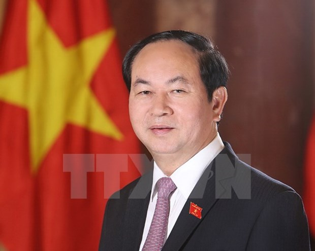 President underscores great national unity in development hinh anh 1