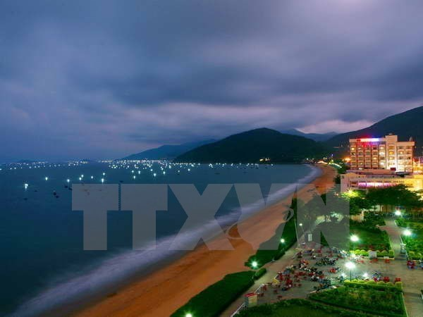 Binh Dinh strives for 5 million tourists by 2020 hinh anh 1