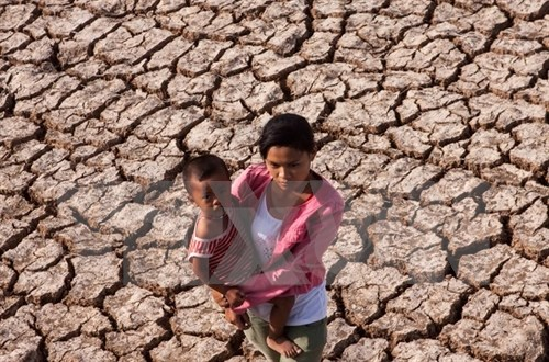 More women's engagement to climate change adaptation stressed hinh anh 1