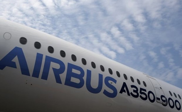 Airbus helps develop aviation industry in Vietnam hinh anh 1