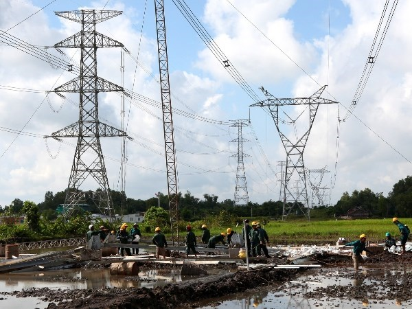 Int'l conference discusses power loss mitigation hinh anh 1