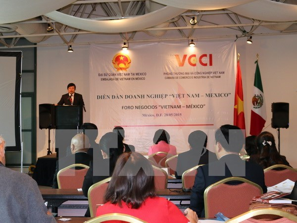 Vietnam, Mexico forge practical, effective cooperation hinh anh 1