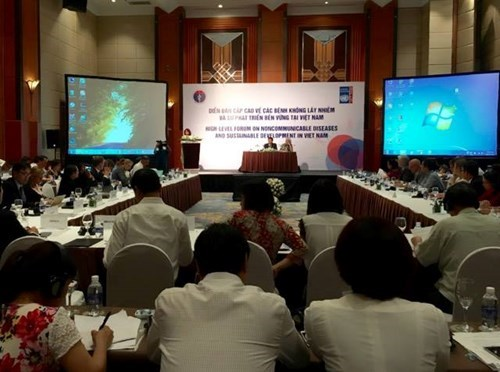 Conference discusses ways to control non-infectious diseases hinh anh 1