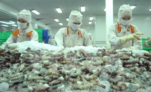 VASEP to sue US over unreasonable anti-dumping tariff on shrimp hinh anh 1
