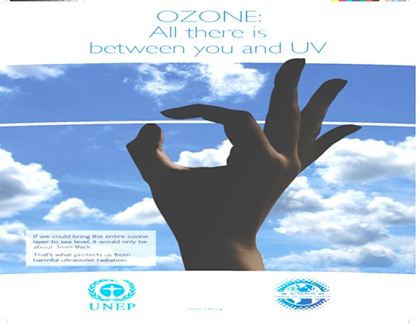 Vietnam's achievements in ozone layer protection hailed hinh anh 1