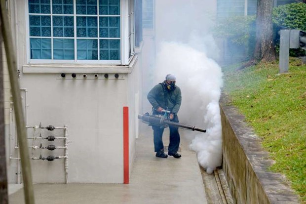 Twelve new Zika cases reported in Singapore hinh anh 1