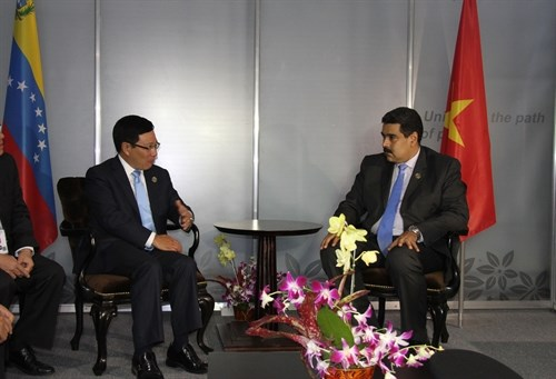 Vietnam eyes stronger multifaceted cooperation with Venezuela, Iraq hinh anh 1