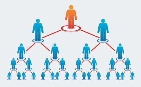 Focus on multi-level marketing laws hinh anh 1