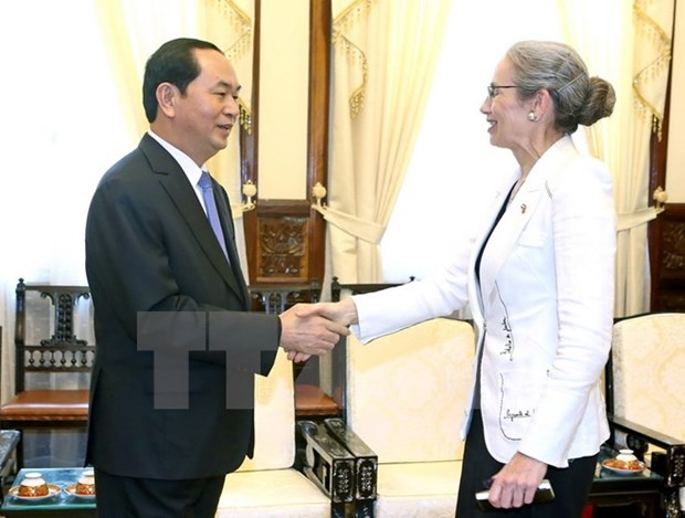 Vietnam wants to boost ties with Netherlands: President hinh anh 1