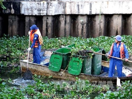 HCM City fights pollution in canals hinh anh 1