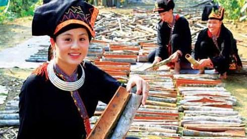 Yen Bai to hold Van Yen cinnamon festival in October hinh anh 1