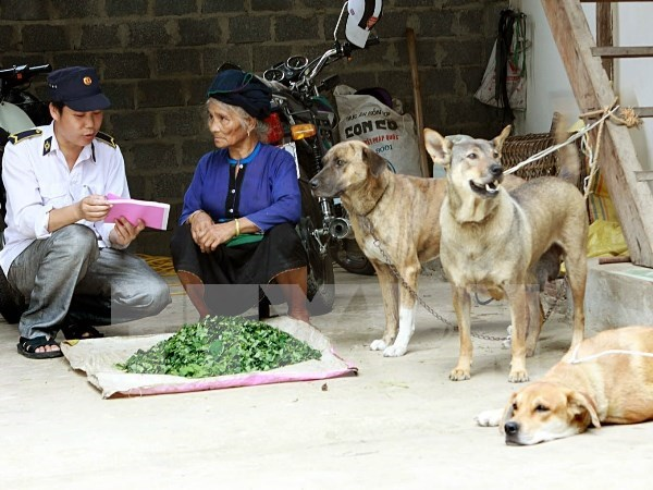 Hanoi responds to World Rabies Day hinh anh 1