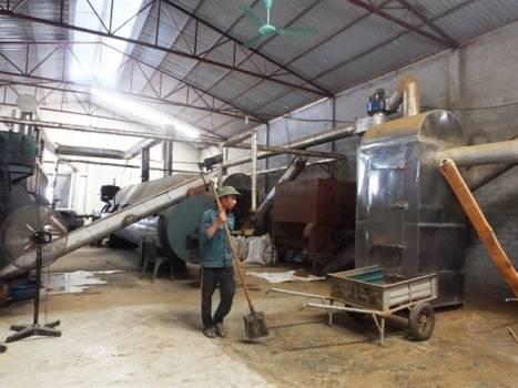 Vietnam's biggest fish powder mill inaugurated hinh anh 1