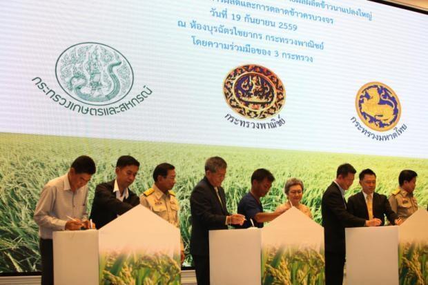 Thailand to set up rice megafarms hinh anh 1