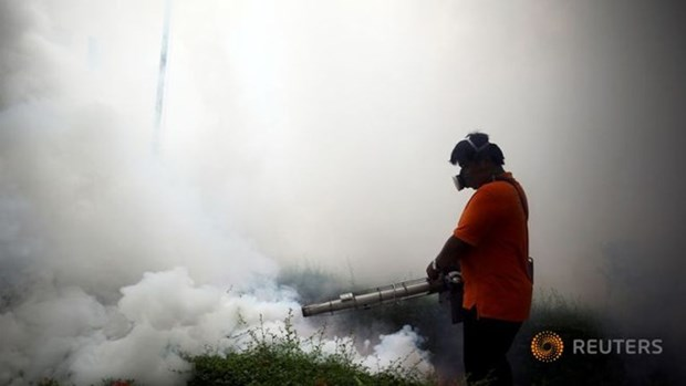 Thailand investigates four Zika-linked microcephaly cases hinh anh 1