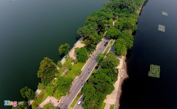 Hanoi streets to be covered in greenery hinh anh 1