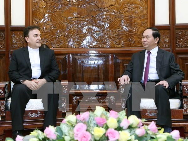 President hosts Iranian Ambassador, Japanese guest hinh anh 1